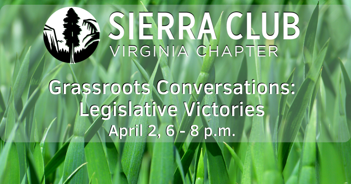 grassroots conversation banner